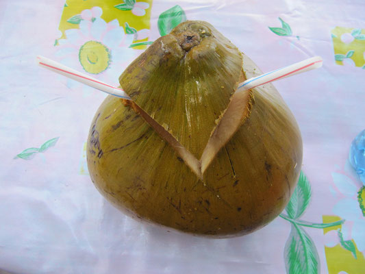 Kokosnuss.