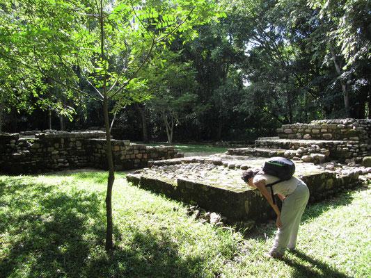 Las Seputuras, etwa 1km von den Hauptruinen entfernt, war ein Wohnviertel der reichen Elite.