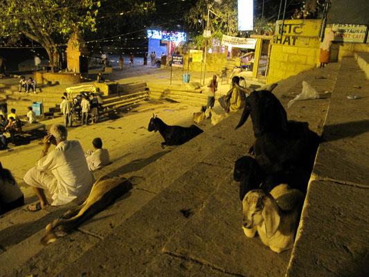 Eines der belebtesten Ghats am Abend ist zweifelsohne das Assi Ghat.