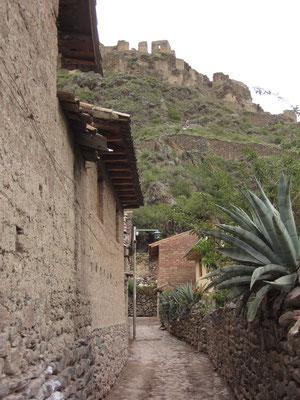 Die Inka-Festung über Ollantaytambo.