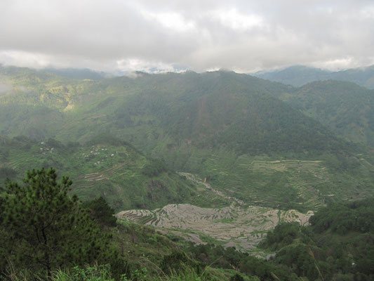 Das Tal der Reisterrassen.
