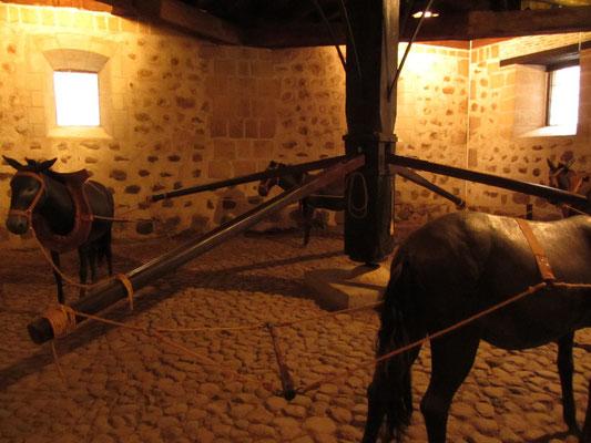 Nur mit Hilfe von Pferden konnten Münzen in großen Mengen hergestellt werden.