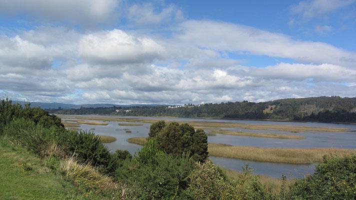 Das Umland von Valdivia.