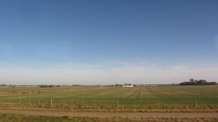 Die argentinische Pampa.