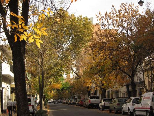 Rosario ist grün, gut es war Herbst, aber schön allemal.
