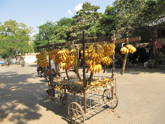 Bananen und Bananen.