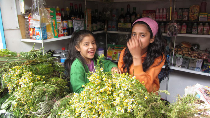 Kamilleverkaufende Kinder.