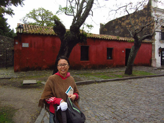 Vor dem roten Museo Portugues.