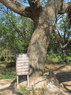 """Der """"Killing Tree"""" - Kinder wurden solange mit ihrem Schädel gegen den Baum geschlagen bis sie gestorben sind."""