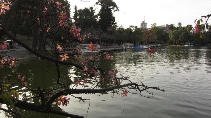 Freizeitangebote im Park.