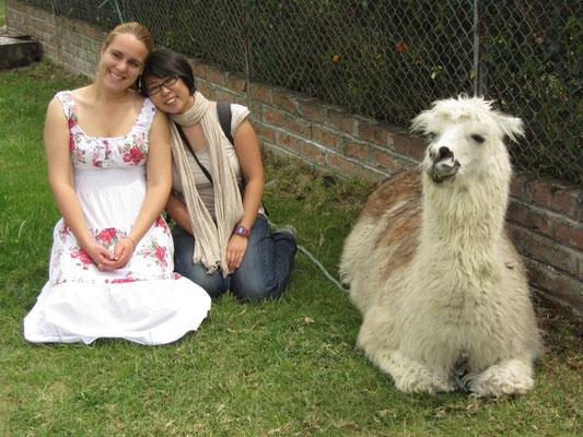 Die beiden Mädels und ihr Lama.