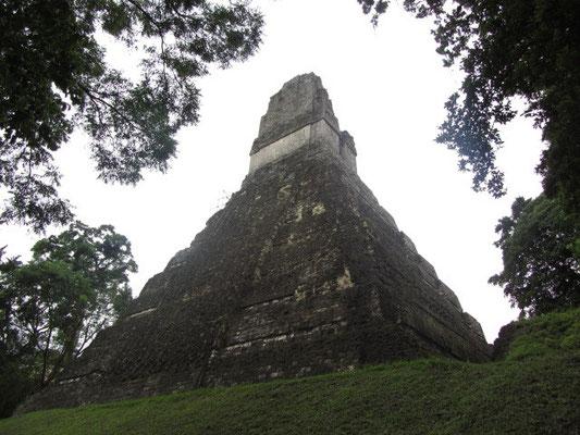 Templo I (Tempel des Großen Jaguars). Dieser Tempel darf aufgrund einiger abgestürzter Touristen leider nicht mehr erklommen werden. Er ist 44 m hoch und wurde für den König Mond Doppelkamm errichtet. Mond Doppelkamms Grab befindet sich unter dem Tempel.