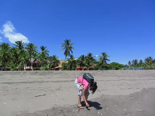 Muschelsammeln am Strand von Poneloya.