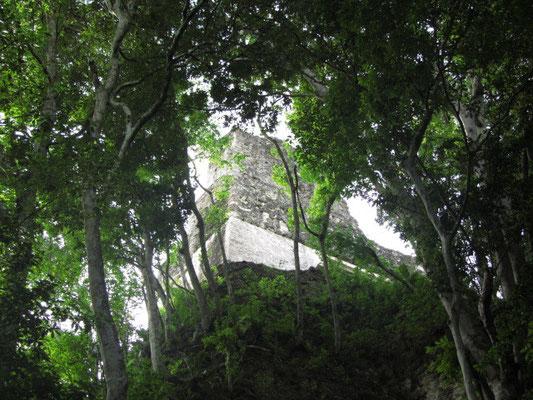 Templo III.