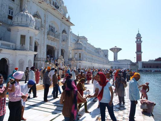 Einmal im Leben sollte jeder Sikh den Tempel (Gurdwara) besuchen.