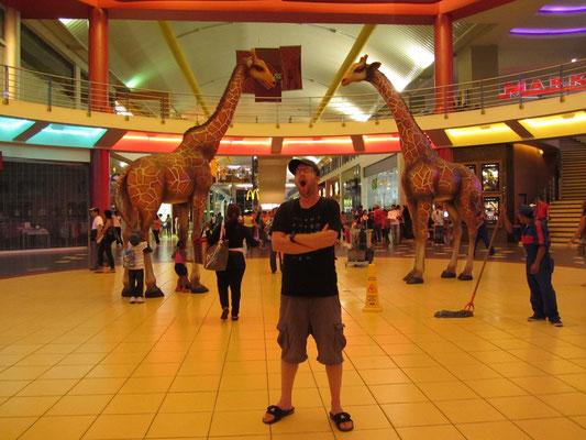 Müder Mall-Besucher. (Albrook Mall)