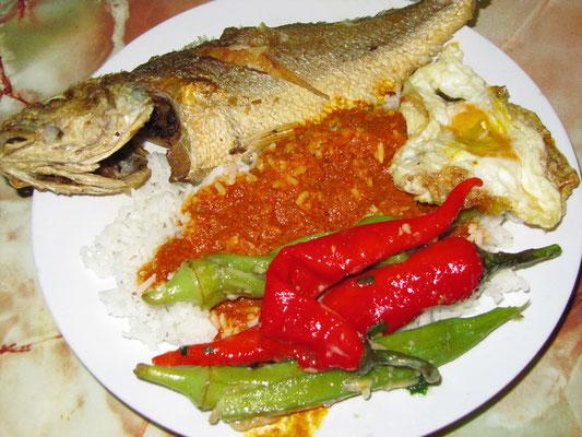 Economy Rice, mit einer Auswahl von gebratenem Fisch, Gemüse, gebratenem Ei & Reis mit indischer Currysauce.