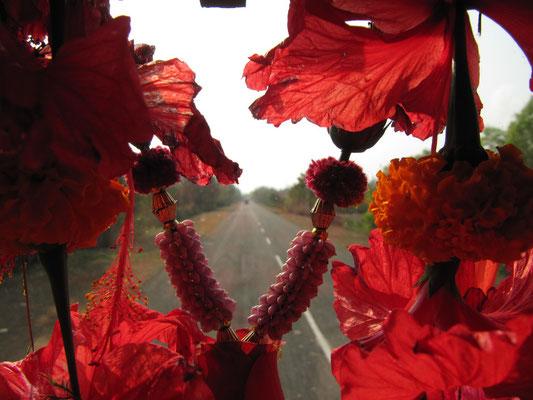 Die Straße nach Puri. (Foto durch die Frontscheibe unseres Buses)