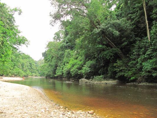 Der Fluss war sogar zum Baden geeignet.