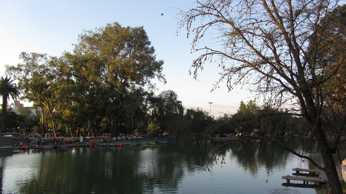 Mitten im Park gibt es außerdem einen künstlichen See mit zwei Inseln.