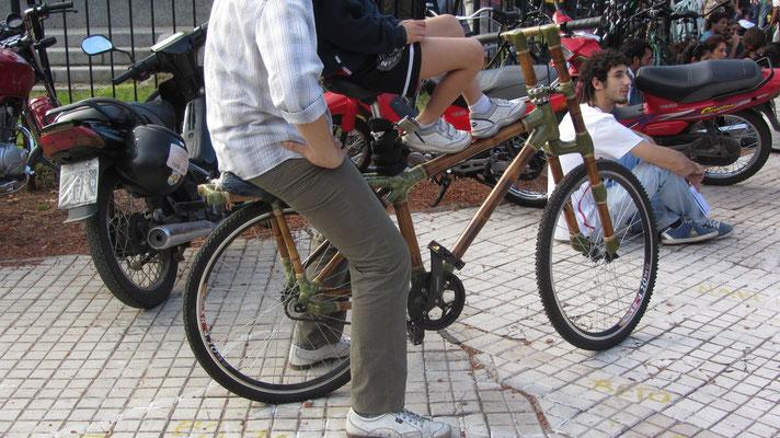 Ein echtes Bambusbike. Ökologischer geht's nimmer.
