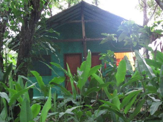 Unser Dschungelhaus.