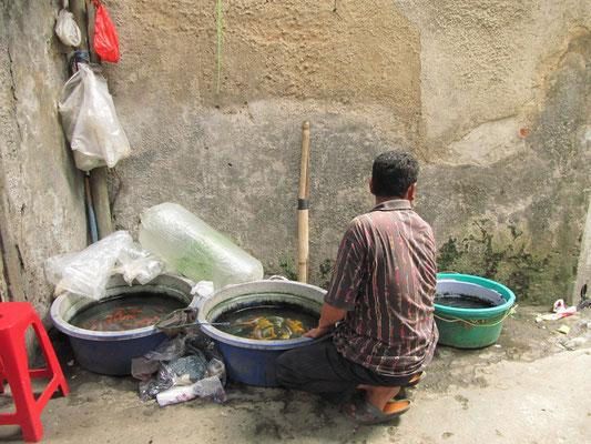Fischverkäufer.