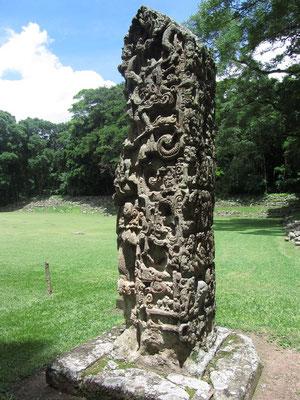 """Stele D. Abbildung von König """"18 Kaninchen"""". Unter seiner Herrschaft entwickelte man jenen lebendigen Stil, für den Copán heute bekannt ist."""