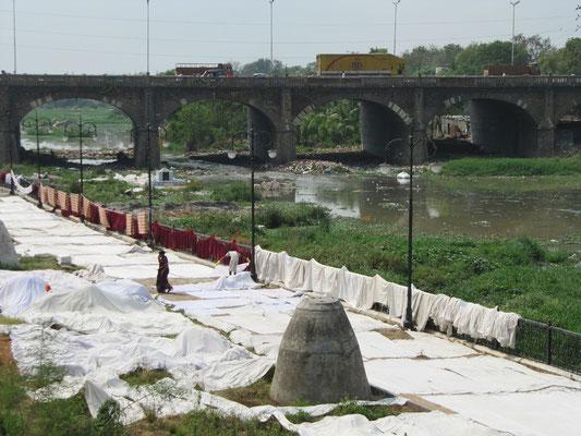 Gigantische Tücher werden nach dem Waschen im Fluß zum Trocknen ausgelegt.