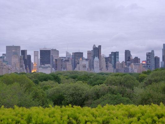 Blick über den Central Park vom Dach des Met.