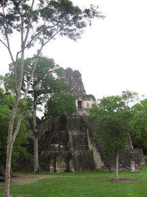 Templo II. Dieser Tempel ist besteigbar und bietet einen fantastischen Überblick über den Gran Plaza.