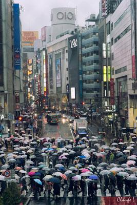 Shibuya sous la pluie