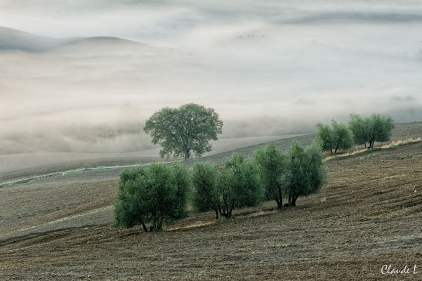 Val d'Orcia,Brumes matinales