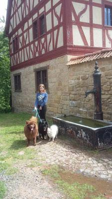 Historischer Dorfbrunnen.
