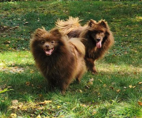 Galina & Ginger