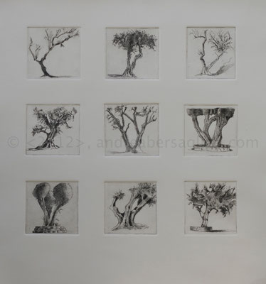 "9 Olive Trees, 16x17"", Drypoint and Etching"