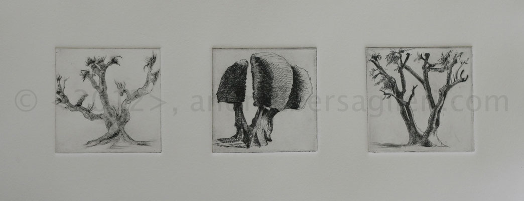"""3 Olive Trees, 7x16"""", Drypoint and Etching"""