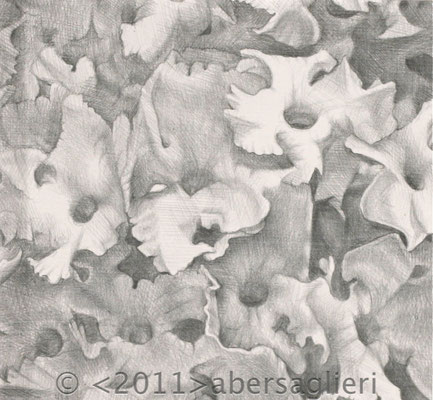 "Silver Butterfly Bush, silverpoint on paper, 5""x5"" 2011"