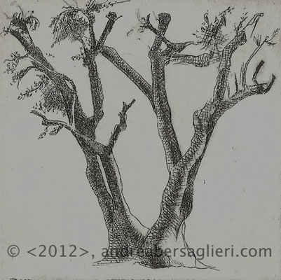 "Olive Tree V, 3x3"" Drypoint and Etching"