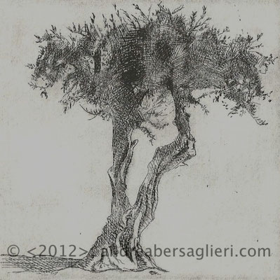 "Olive Tree II, 3x3"" Drypoint and Etching"
