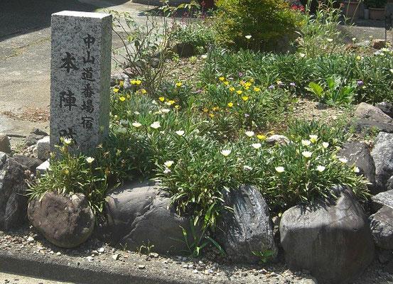 中山道番場本陣跡の碑