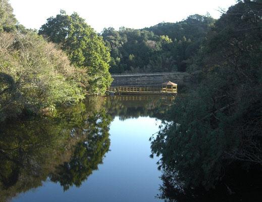 池 橋上から