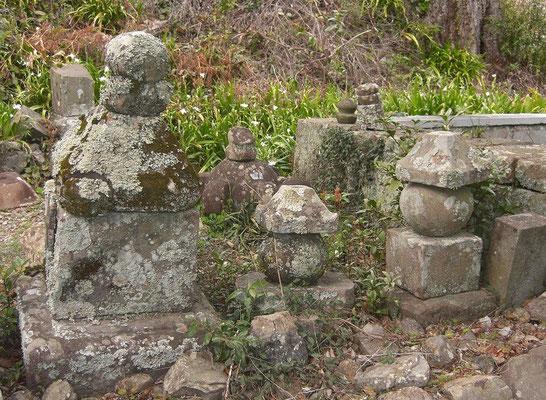 苔生す墓石群