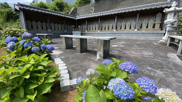 紫陽花 あじさい(5月下旬~6月中旬) 三十三観音霊場