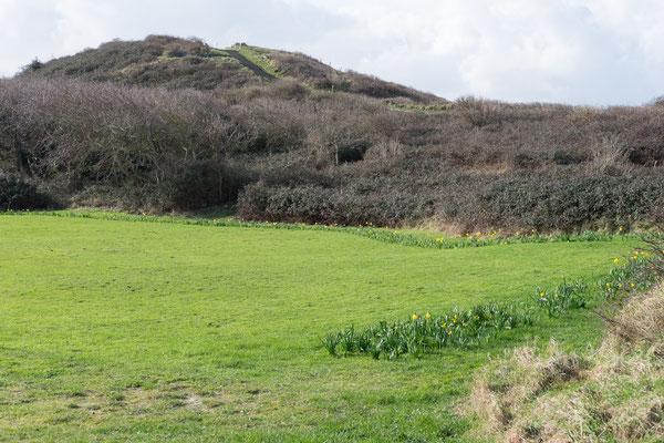 Der Hoge Hill