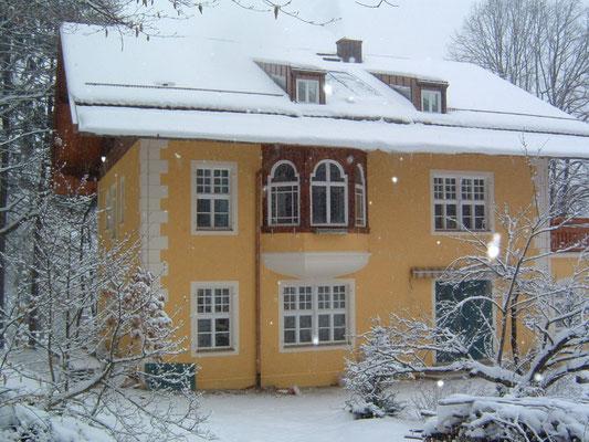 Sanierung Villa Fleischmann Deutschland