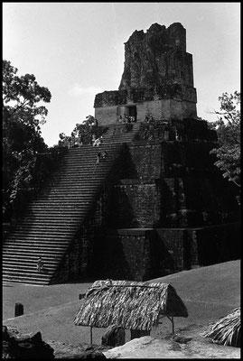 Pyramide Tikal janvier 1992