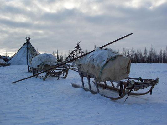 Чумы и нарты на зимнем стойбище, Южный Ямал, март.