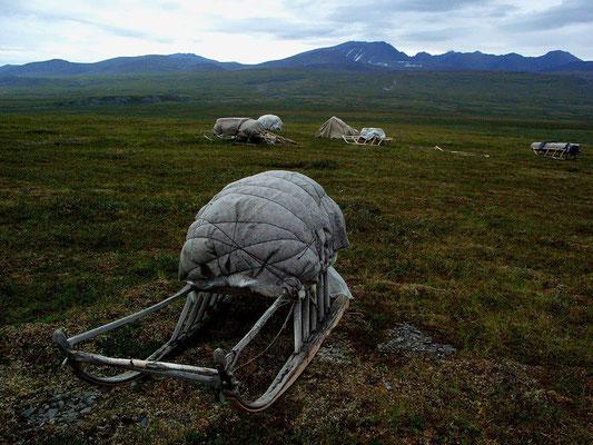 Нарты с зимними вещами, оставленные на весеннем пастбище, Полярный Урал.
