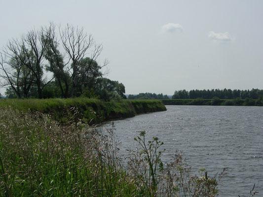 Обрывистый берег реки Москва. Неподалёку расположена гнездовая колония ласточек-береговушек.